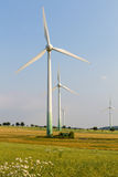 Windmotoren mit wilder Wiese Stockbild