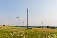 Windmotoren mit wilder Wiese Stockfoto