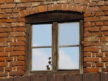Window 005. Old window. April 2006 Royalty Free Stock Images