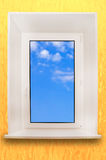 Window. Stock Image