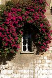 Window. Red flowers surrounding a white closed window in a stone house Royalty Free Stock Photo