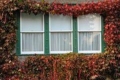 Free Window Stock Images - 14909514