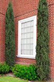 Window. In corner of brick building flaanked by evergreens stock photos