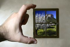 Window. A hand holding a window with a view of an almond tree Stock Photography