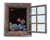 Window. Flowers and old wood window stock images