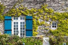 Window. Nice windows on a nice house Stock Photography