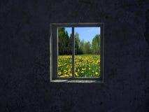 Window. Background image of dirt window Royalty Free Stock Photos