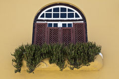 Window in the Alentejo. Castro Verde, in the Alentejo, is bordered on the north by the municipalities of Beja and Aljustrel, on the South by Almodovar, on east Royalty Free Stock Image