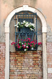 Window in Arch with Iron Bars and Flower Boxes Stock Photography