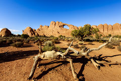 Window at Arches National Park Royalty Free Stock Photography
