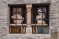 Window in Assisi, Italy Stock Image