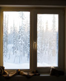 Window on the background of the winter forest stock image