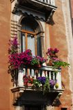Window with balcony and flowers Stock Images