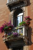 Window with balcony and flowers Royalty Free Stock Photography