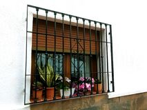 Window with bars and flower pots. On a white facade stock images