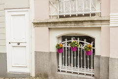 Window with bars and three plants. Brugge old Town Royalty Free Stock Image