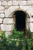 Window bastion. Window, overgrown with ivy in the fortress of Kotor (Montenegro Royalty Free Stock Photos
