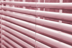 Window blinds. Window venitian plastic blinds in a shade of red Stock Photos
