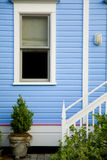 Window on blue wall with plant and stairs Royalty Free Stock Photos