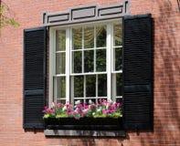 Window Box in Boston. Elegant window box in Beacon Hill, Boston royalty free stock photos