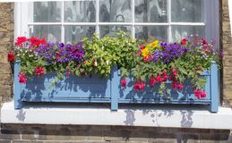 Window Box Royalty Free Stock Photo