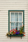 Window Box with Flowers Royalty Free Stock Image