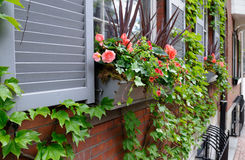 Window box in style Stock Photos