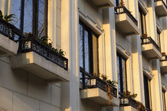 Window Boxes on Building Royalty Free Stock Photos