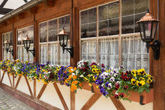 Window boxes, Nuremberg, Germany Stock Photo