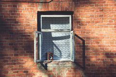 Window on a Brown Brick Wall Stock Photo