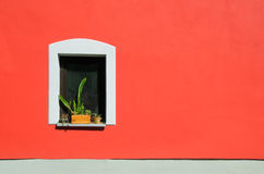 Window with cactus of countryside house Royalty Free Stock Images