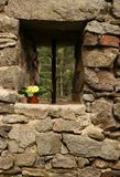 Window in the castle and primrose Royalty Free Stock Images
