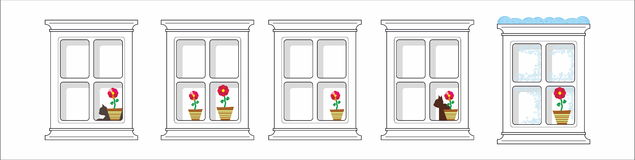 Window, cat and flower Stock Images