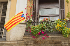Window with a Catalan Flag. Stock Images