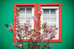 Window and cherry Royalty Free Stock Photos