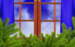 Window, christmas tree branch and night snow nature Royalty Free Stock Images