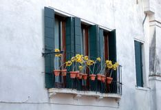 A window from the city of Venice with decorations. stock images