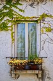 Decorated Italian Window Royalty Free Stock Images