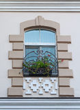 Window in a classic style and a box of flowers Stock Photos