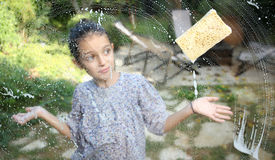 Window cleaner Royalty Free Stock Images