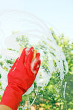 Window cleaning. Hand in glove is cleaning a window Royalty Free Stock Images