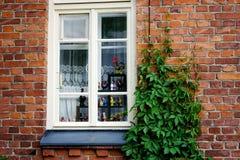Window close-up brick wall Royalty Free Stock Photography