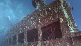 Window close up in Salem Express shipwrecks underwater in the Red Sea in Egypt. Extreme tourism on the ocean floor in the world of coral reefs, fish, sharks stock footage