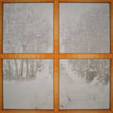 Window closed over winter landscape Royalty Free Stock Photography