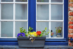 Window with colorful flowers Royalty Free Stock Image