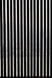 Window curtains silhouette Stock Photo