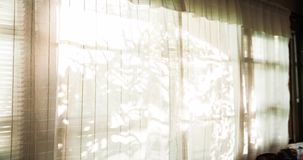 Window curtains and wind in natural light stock video footage