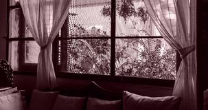 Window curtains and wind stock video footage