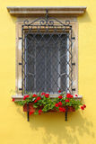Window decorated with colorful red Geranium flowers Stock Photos