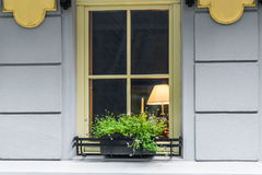 Window decorated flowerpot Royalty Free Stock Photography